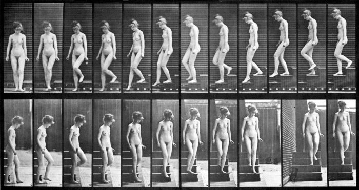Female_nude_motion_study_by_Eadweard_Muybridge_(2)